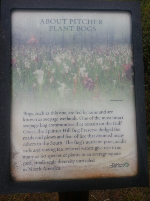 The preserve is comprised of 627 acres of longleaf pine and bog habitat.