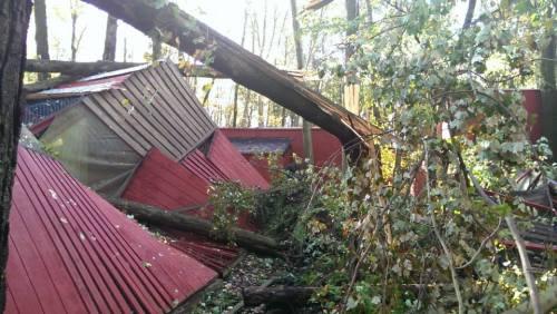 Damaged enclosure: Photo source: The Raptor Trust Facebook Page